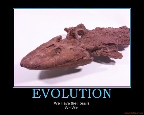 evolution-fossils-win