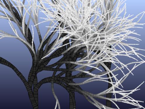 cg_trees